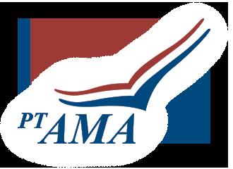 AMA Airline